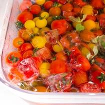 【夕食ブッフェ一例】温泉の自然エネルギーで栽培されたオロフレトマト(季節により変更になります)