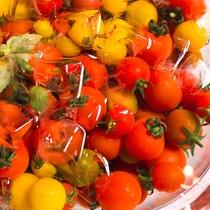 【夕食ブッフェ一例】地元の美味しい野菜を新鮮なままでご提供します。