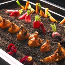 【夕食ブッフェ一例】近郊野菜だけでなく道内各地の珍しい野菜もお楽しみ頂けます。