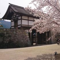 松代の観光-春 (2)