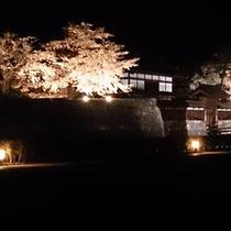 松代の観光-夜桜