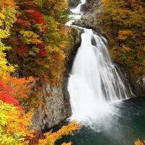 *【法体の滝】鳥海山の雪解け水と湧き水を3段に渡り流れ落ちる様はとても迫力満点!
