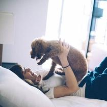ペットは家族の一員。大好きなペットと一緒に旅行に行こう!