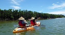 マングローブカヌー体験