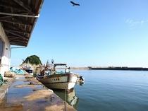 浅茂川漁港