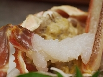 鮮度が良いと美味しい生ミソ「カニミソのお刺身」
