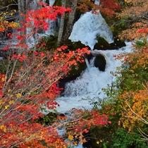 秋の阿寒川上流