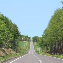 *周辺景色/どこまでも続く長い道。こんな風景も北海道ならでは。