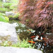 *中庭/大自然のなかにあるシティホテル。やすらぎのひとときをお過ごしください。