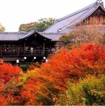 広大な境内を誇る東福寺
