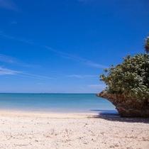 コンドミニアム前のビーチ