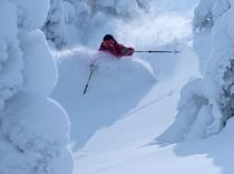 Owner sambo ski