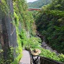 *大噴湯/人気の大噴湯までは徒歩5分!雄大な渓谷の眺めは、見るだけで気分爽快♪
