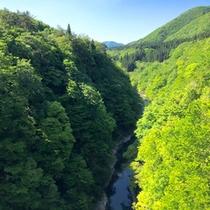 *周辺景色/山に囲まれた限界集落ならではの絶景を見に来ませんか?