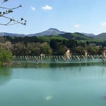 *周辺景色/五月の節句・鯉のぼりが天高く舞う皆瀬川。