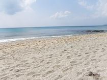 ビラビーチ(当館から歩いて5分)。お部屋から砂浜までのお散歩もおススメです。