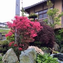 *中庭/季節ごとの草木、花々がお客様をお迎えしています。