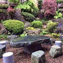 *中庭/きれいに手入れされた、日本庭園風のお庭。