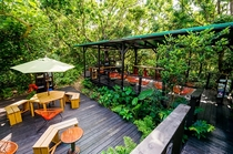 ジャングルブックカフェ