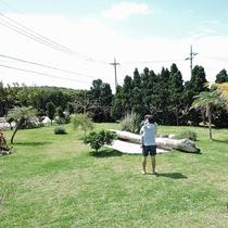 *【施設設備】青空の下、のんびりと芝生の上で過ごしてみるのもおすすめです。
