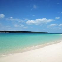 *【周辺】日本一のビーチに3年連続で選ばれたことのある前浜も近くにあります。