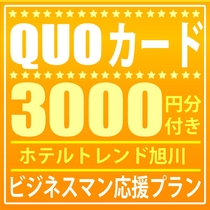 QUOカード3000円付きプラン