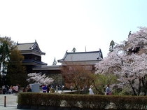 桜の上田城