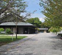 【近隣】名古屋能楽堂(左側)と並木道