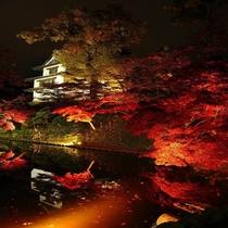 弘前城菊と紅葉まつり~夜