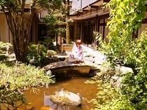 【中庭】池を泳ぐ「鯉」には、この池で生まれた子鯉たちが。養殖用ではなく、放された鯉に稚魚がうまれるの