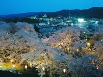 津山市「鶴山公園」の夜桜