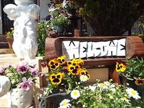 ポンドテェイル入口の花風景