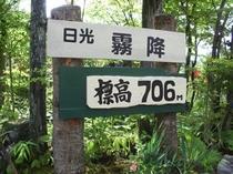 ポンドテェイルは標高706M