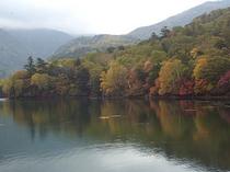 湯ノ湖の紅葉
