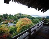 三重塔からの眺望
