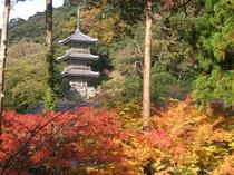 清水寺三重の塔