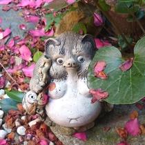 坪庭:ユーモラスな表情の狸の置物
