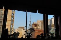5階リビング 窓からの景色