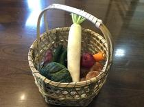 地場産の採れたて野菜