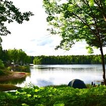 *【周辺】湖畔のキャンプ場。静かな森の中で贅沢な時間をお過ごし下さい。