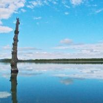*【周辺】北欧の湖畔にいるような錯覚をもたらす朱鞠内湖。