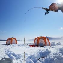 *【ワカサギ釣り】初心者も経験者も楽しめる!2mを超える氷を挟んで駆け引き!