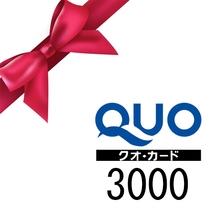 あると嬉しいQUOカード3,000円分♪