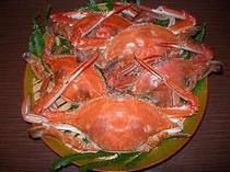 茹でたてのわたり蟹