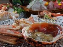 【越前蟹】大きさにびっくり!献上かに級フルコース