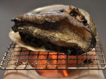 【鮑】日本海の波にもまれたアワビは美味しい!!踊り焼き