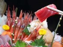 【姿盛り】旬の鮮魚舟盛り一例 これぞ、越前の海の幸!