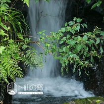 【周辺の風景】 滝
