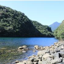 【安房川】宿のすぐ側には、屋久島で最もカヤックが盛んに行われる川。
