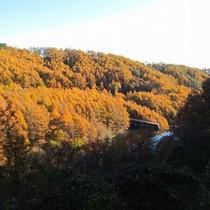 *深澤渓谷/息を呑むような広大な自然が目の前に広がります。